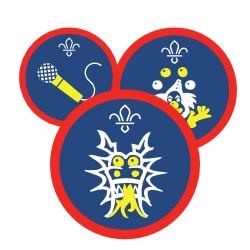 Scouts Activity