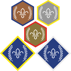 Chief Scout's Awards